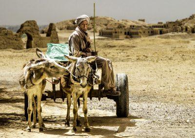Desert Trader