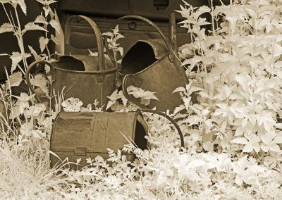Watering Cans II
